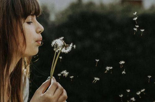 the beautiful breath