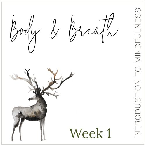 Week 1: Body & Breath