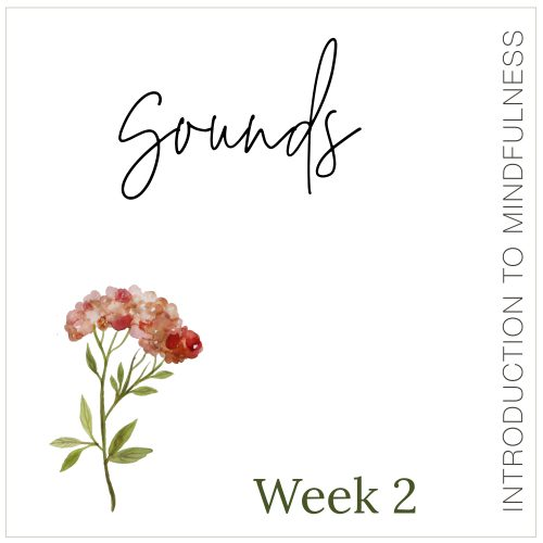 Week 2: Sounds