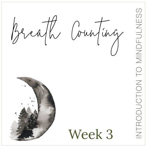 Week 3: Breath Counting
