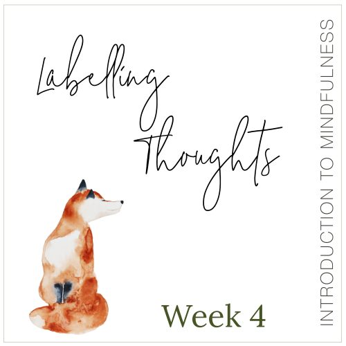 Week 4: Labelling Thoughts