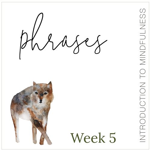 Week 5: Phrases